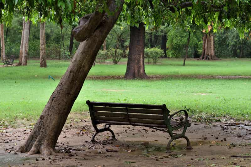 The Deer Park is a peaceful place to relax with your partner