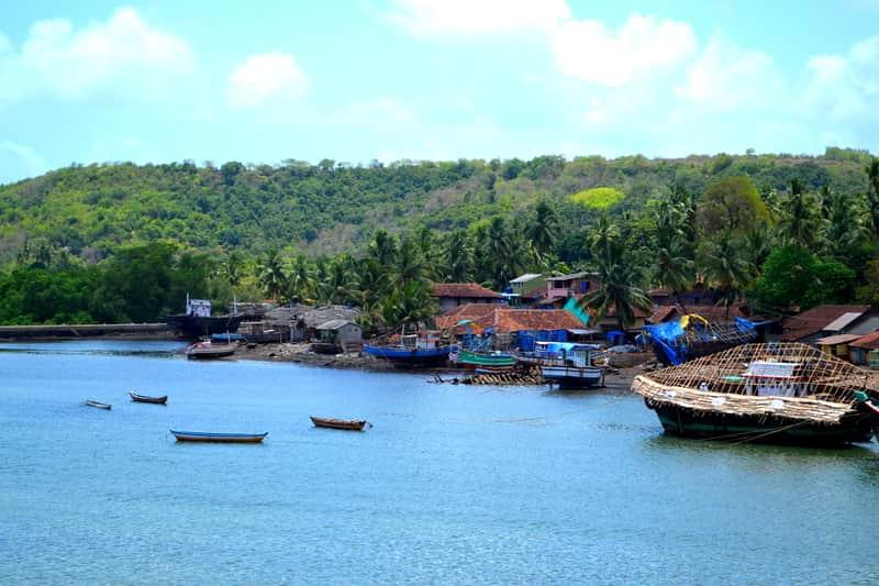 Arre Ware Along The Konkan Coast