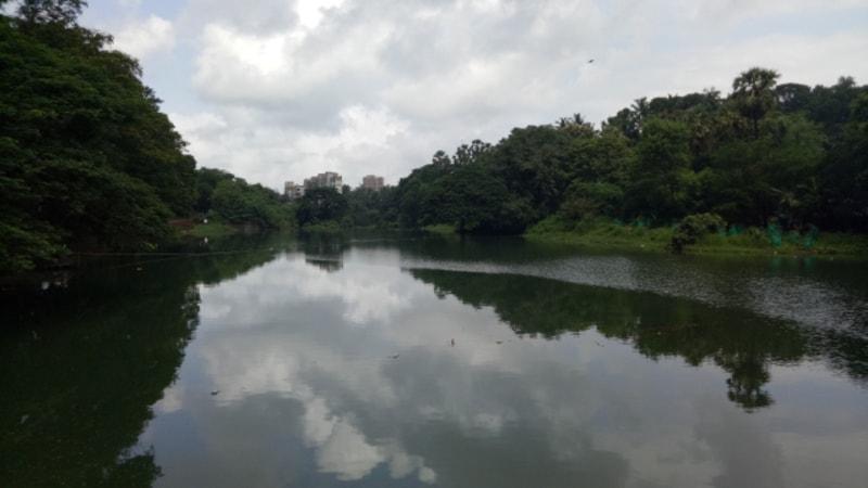 Hike The Shilonda Trail at Sanjay Gandhi National Park