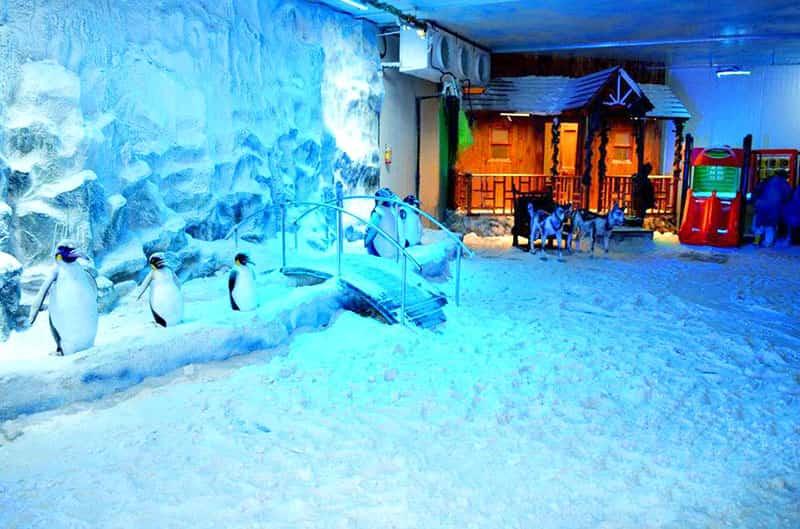 Snow World will surely please your children