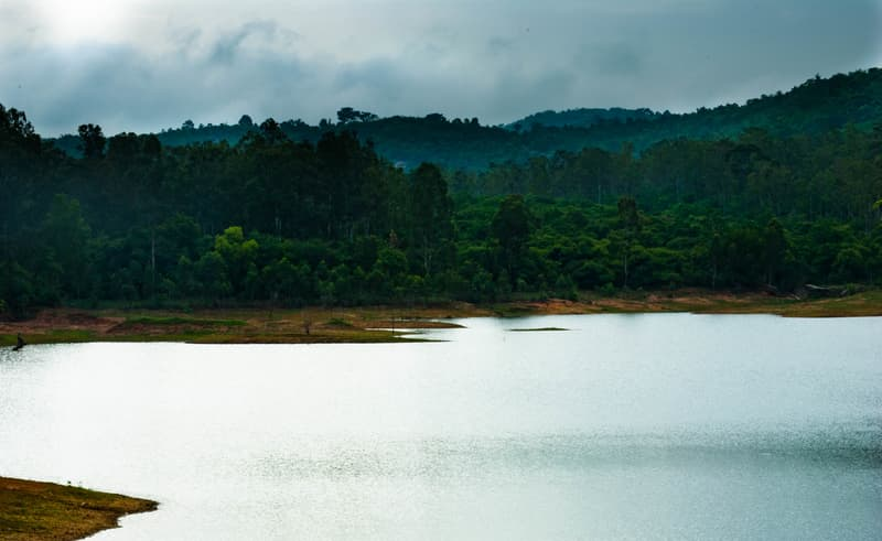 The Smooth, Reflective Surface of the Thattekere Lake