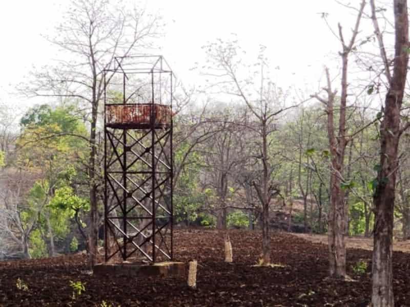 Yawal Wildlife Sanctuary, Yawal