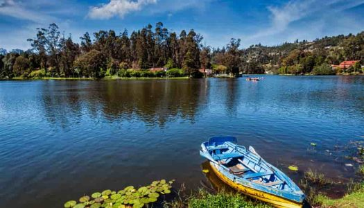12 Best Places to Visit in Kodaikanal for Tourists