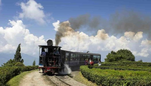 A Comprehensive Guide to The Darjeeling Toy Train