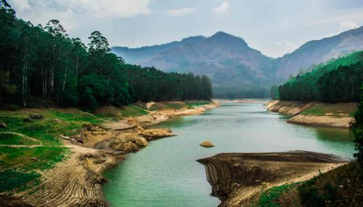 25 Charming Hill Stations in South India that You Must not Miss