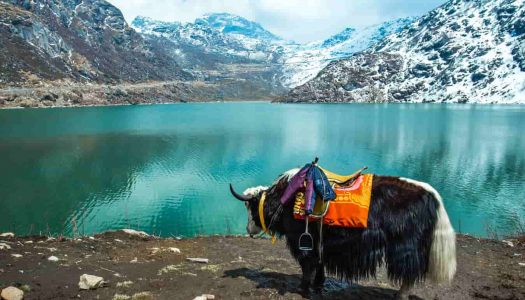37 Places To Visit in India in June That Help You Beat The Heat