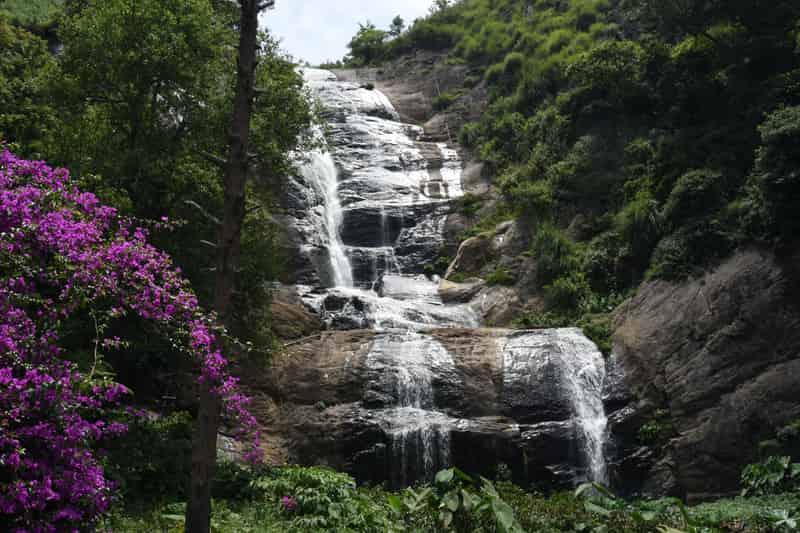 Bear Shola Falls