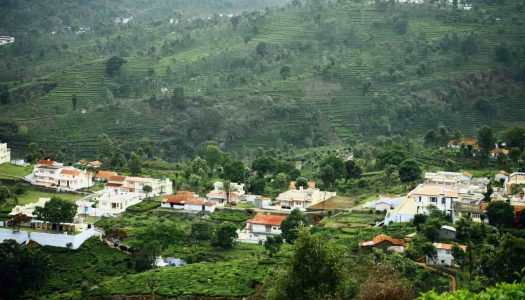 10 Best Trekking Places In & Around Kodaikanal